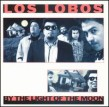 Los Lobos- By The Light Of The Moon
