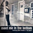 Meet Me In The Bottom- Arkansas Blues Vol 2 THE BANDS
