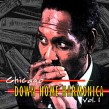 Chicago Down Home Harmonica Vol 1