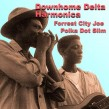 Forrest City Joe / Polka Dot Slim- Downhome Delta Harmonica