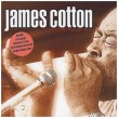 Cotton James- Best Of The Vangurad Years