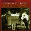 Sound Of The Delta- Mississippi Delta Blues 1960's
