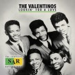 Valentinos- Lookin For A Love
