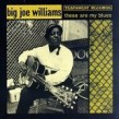 Williams Big Joe- These Are My Blues (OUT OF PRINT)